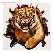 Наклейка Тигр (винил, 200 х 200 мм.)